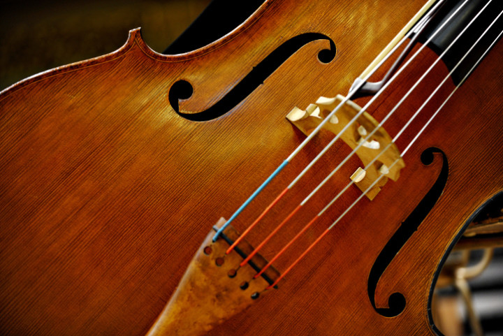 Close up of stringed instrument