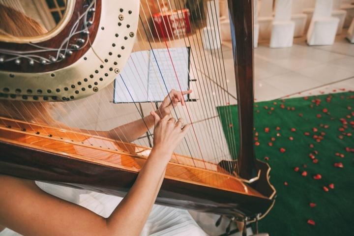 A harpist plays at a wedding