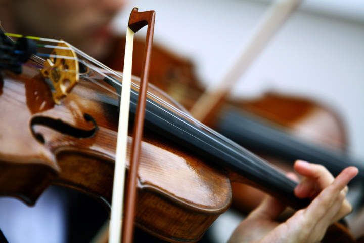 Close up photo of a violist and viola