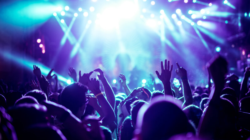 people cheering at a live music concert