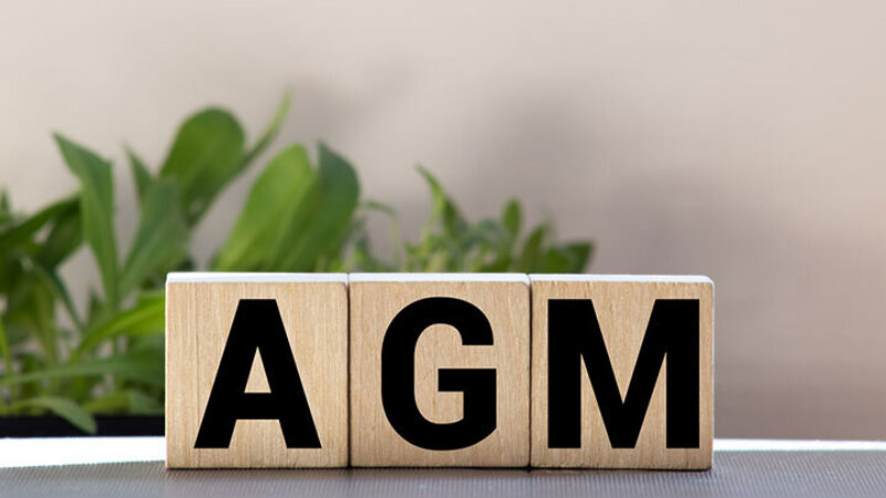 Three wooden cubes with the letters AGM